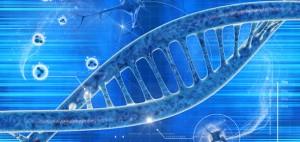 variante-genetica-300x142